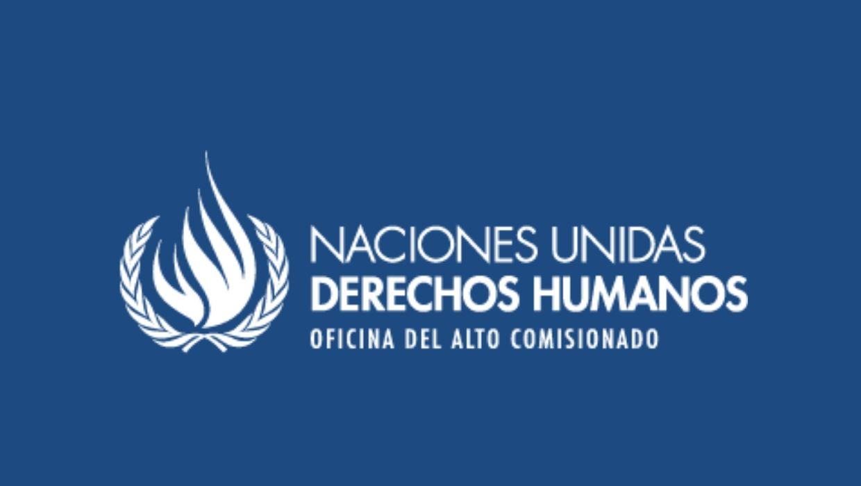 naciones unidas derechos humanos alto comisionado