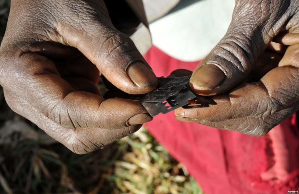 Prohibicion MGF